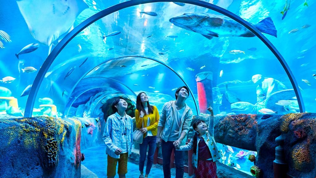 SEA LIFE Malaysia is now officially open at LEGOLAND ...
