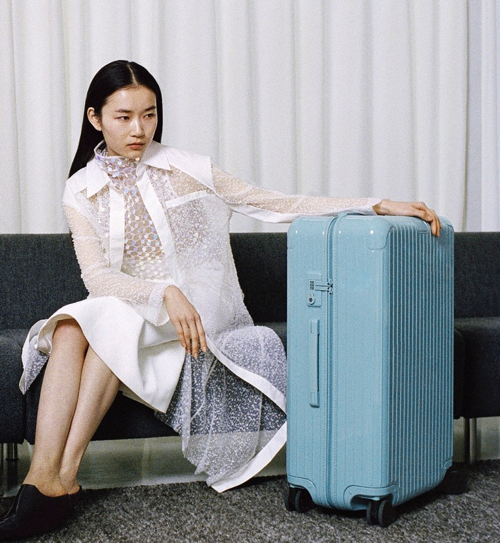 RIMOWA Essential Check-in L in Glacier1